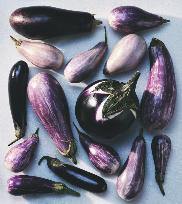fresh garden vegetables eggplants mini purple produce