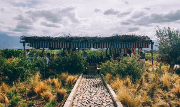 outdoor fine dining farm to table experience tourism people