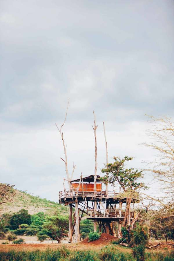 Treehouse architecture in natural landscape